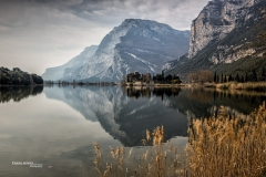 Alpen-501370405